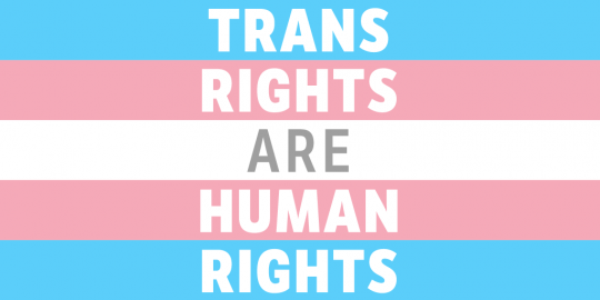 Trans rights are human rights graphic